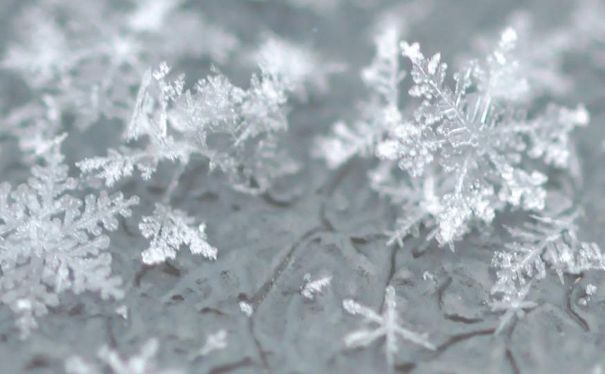 coldclimatetheme875