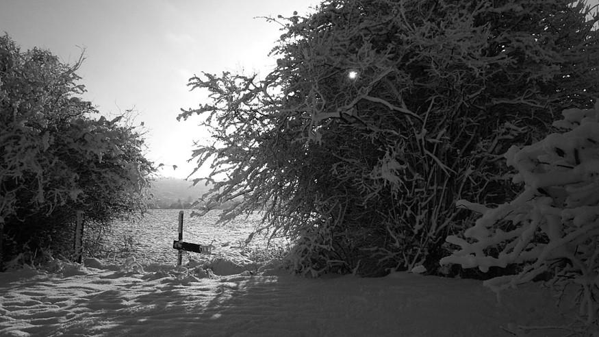 winterscene875