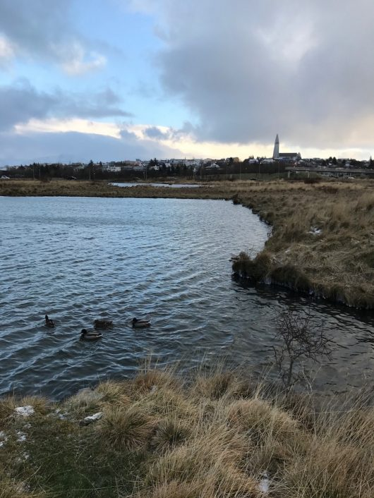 icelandnoir2016_reykjavik_875