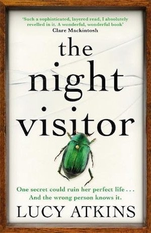 Front cover of The Night Visitor by Lucy Atkins